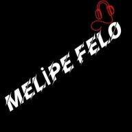 Melipe Felo