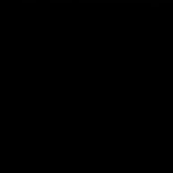 Korkusuz Hamster
