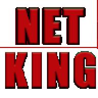 gamernetking