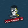 CoRnHuBTR