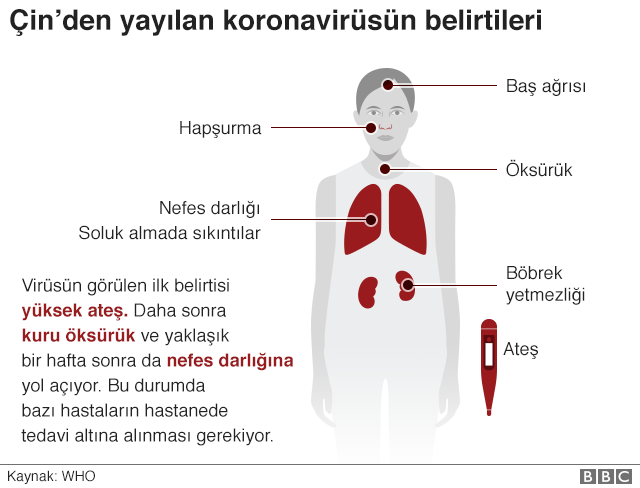 _110637022_coronavirus_symptoms_short_640-nc.png