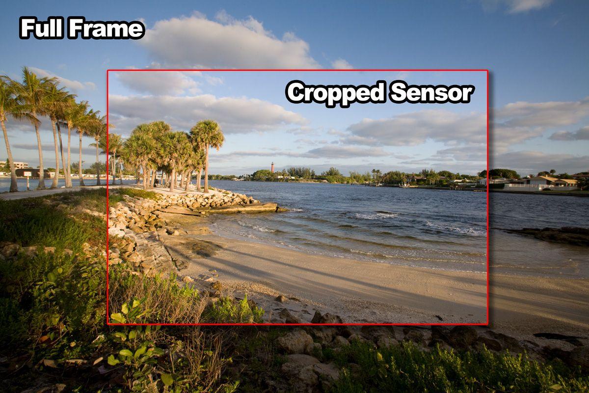 Canon-5D-VS-Canon-20D-Full-Frame-Versus-Cropped-Sensor.jpg