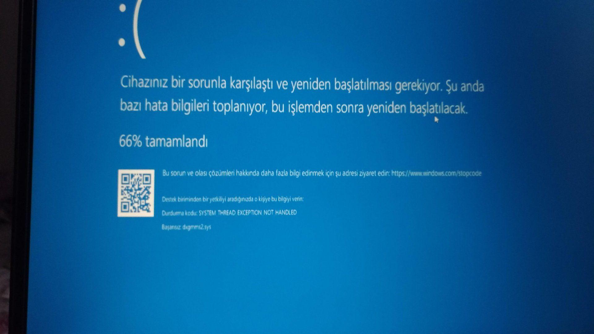Mavi Ekran Hata.jpg
