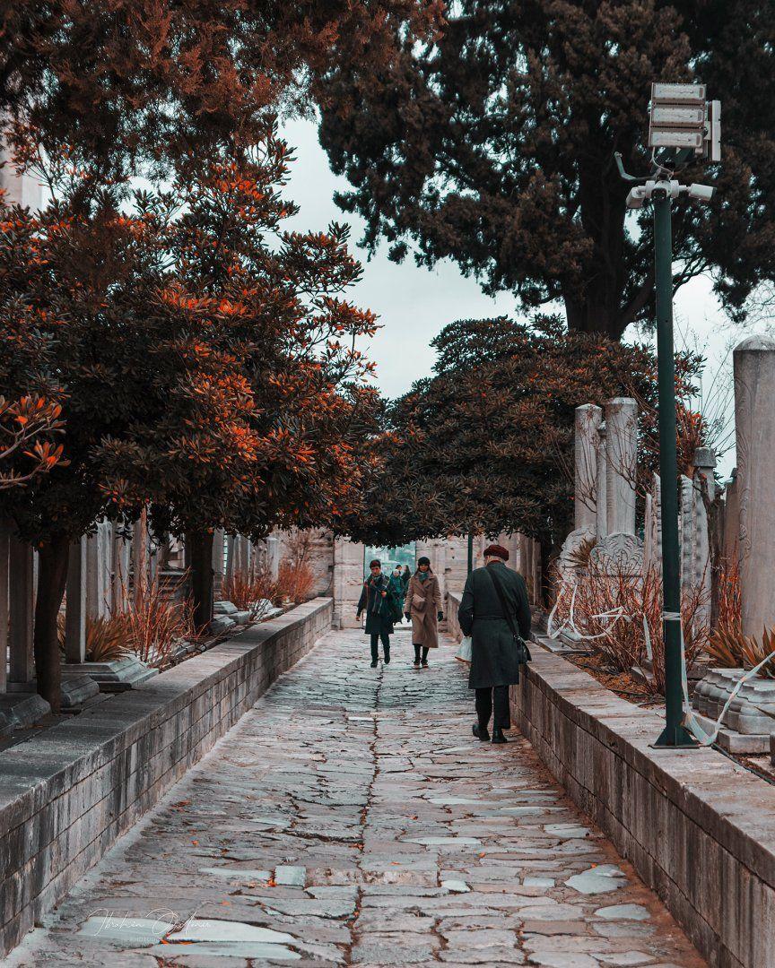 suleymaniye_1.jpg