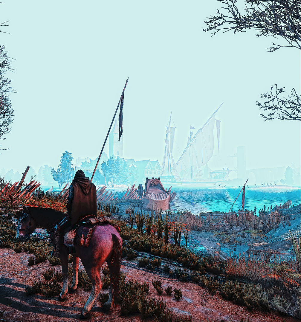 The Witcher 3 Screenshot 2021.07.11 - 22.56.12.09.png