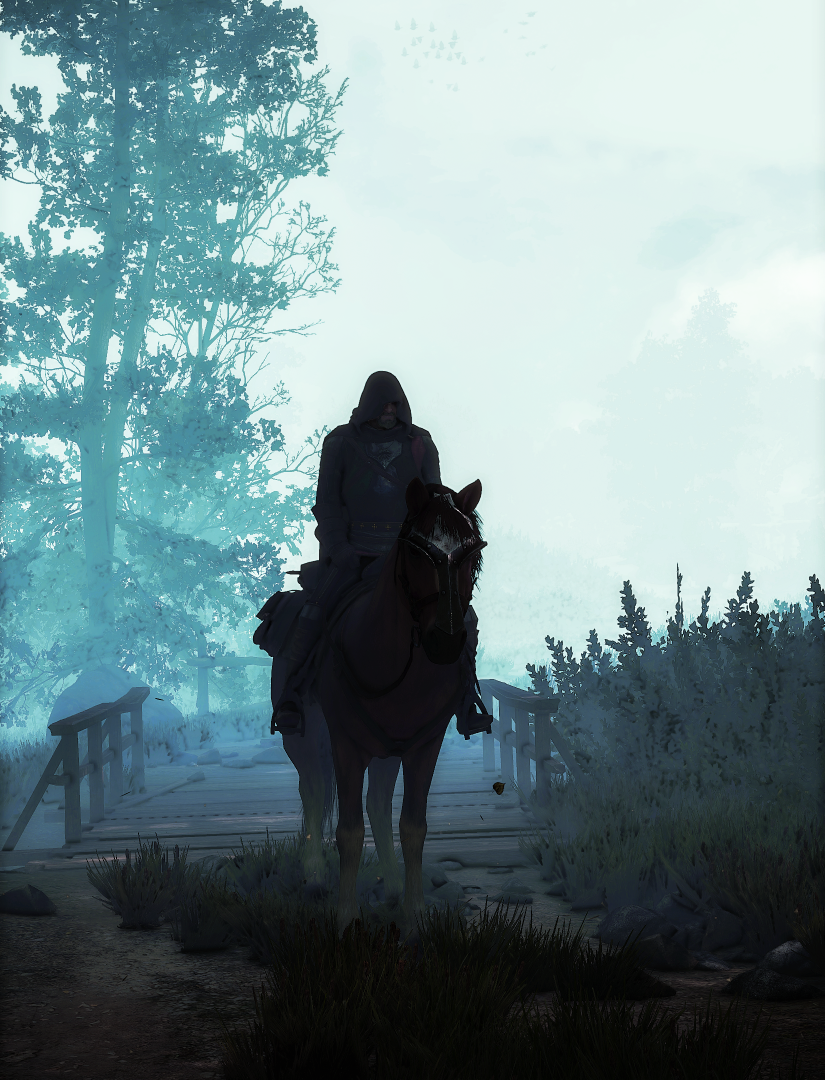 The Witcher 3 Screenshot 2021.07.12 - 21.04.04.69.png