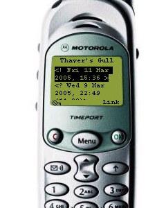 Motorola Timeport 260 Özellikleri
