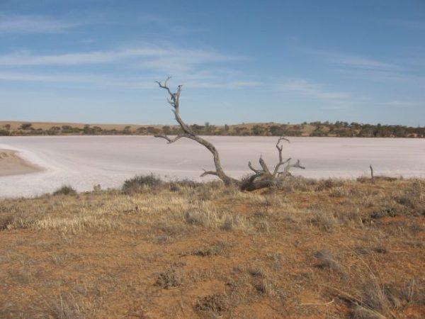 Murray-Sunset Ulusal Parkı, Avustralya'daki en büyük ikinci ulusal park olarak nitelendiriliyor.