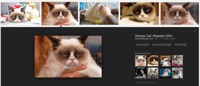 Google'da artık GIF uzantılı görselleri filtreleme yoluyla rahatlıkla bulabilirsiniz.
