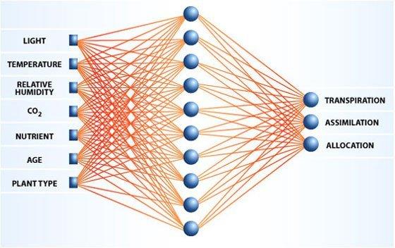 Basit bir Nöral Ağ modeli örneği.