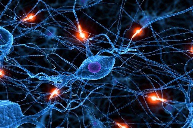 Facebook yapay Nöral Ağ oluşturarak, bizim hakkımızda daha fazla bilgi edinmek istiyor.