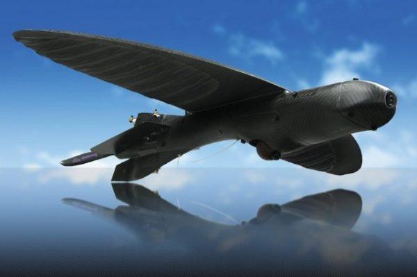Maveric isimli insansız hava aracı ABD Ordusu'nda görev almaya hazırlanıyor.