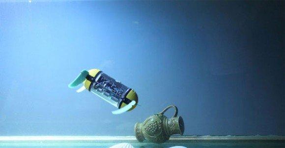 Kaplumbağaları taklid eden u cat göreve hazırlanıyor
