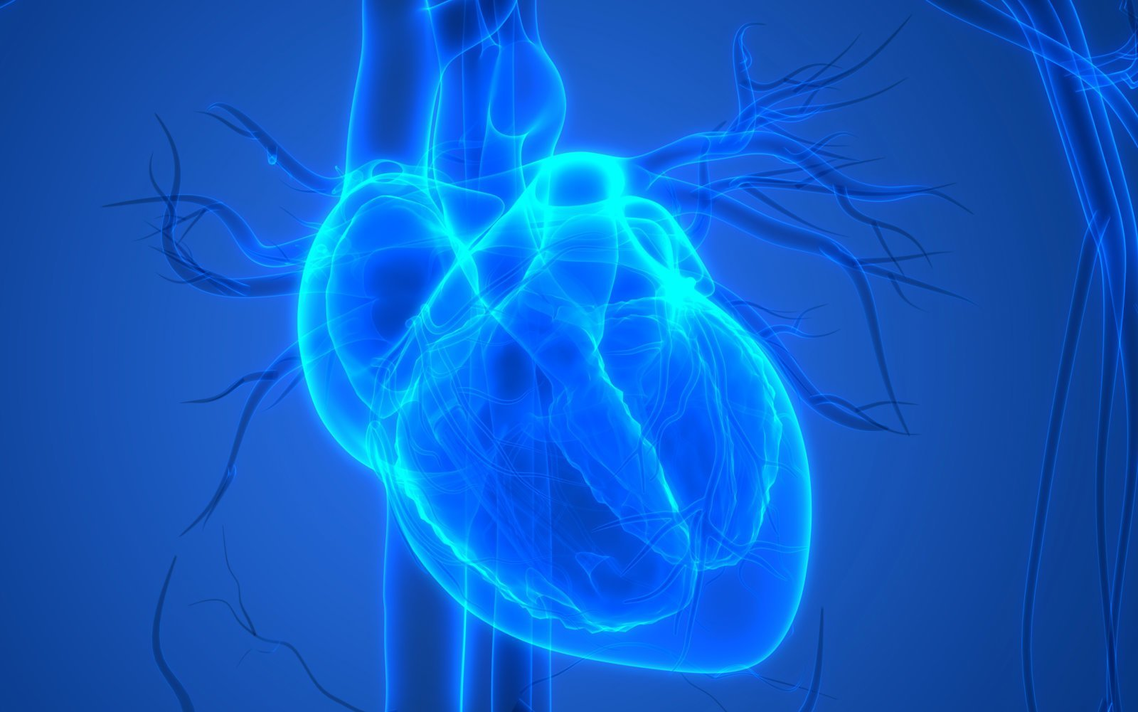 BIOLIFE4D isimli biyoteknoloji şirketi, kardiyak hücreler kullanarak minik bir insan kalbini 3D olarak yazdırdı.