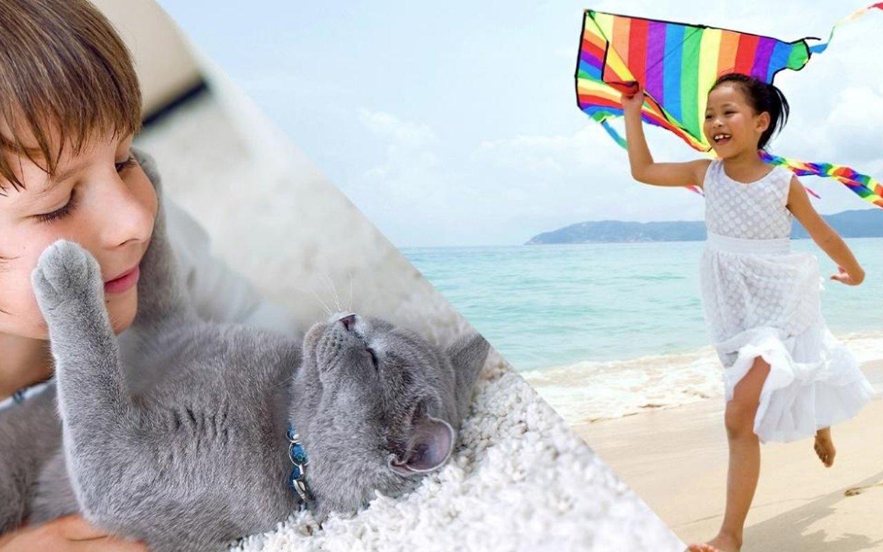 Photoshop Elements 2020 Yapay Zeka