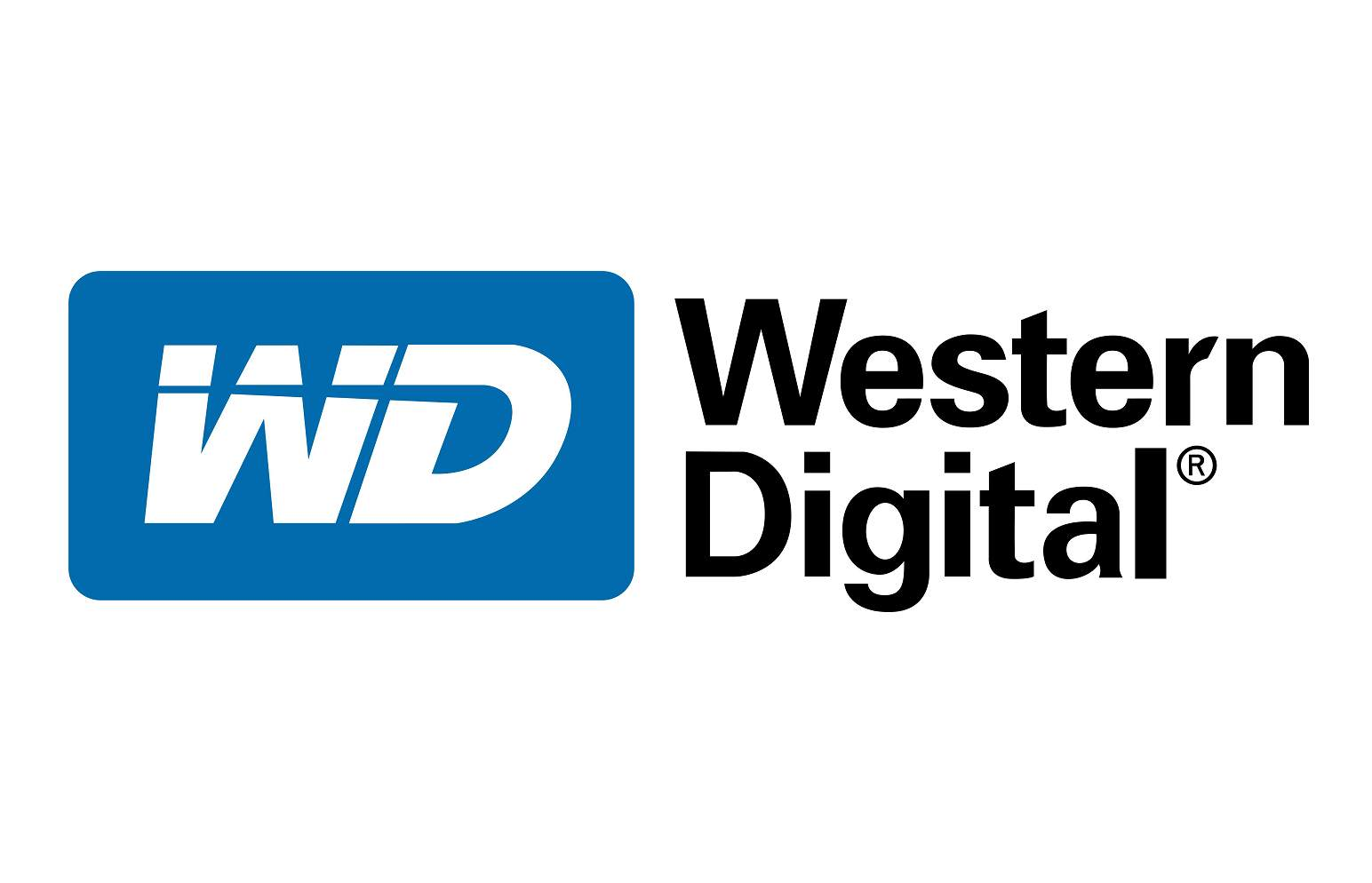 WD SSD modelleri