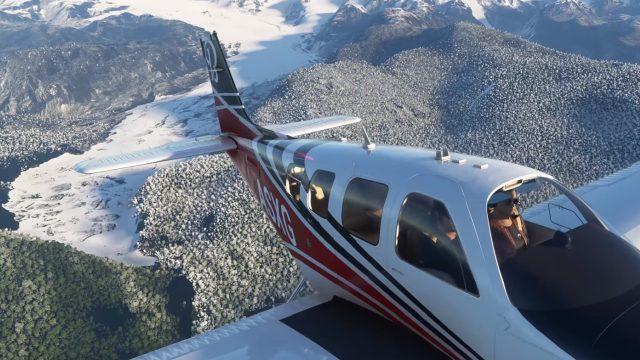 Microsoft Flight Simulator Snow