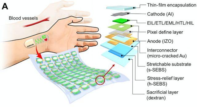 Samsung Giyilebilir OLED Ekran