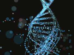 DNA sabit disk